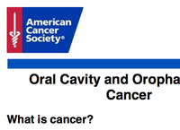 Learn More About Head and Neck Cancer